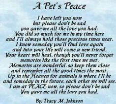 13 Dog Loss Quotes Comforting Words When Losing A Friend 14428 in post at April 2020 pm Pet Loss Quotes, Pet Loss Poems, Dog Death Quotes, Rip Quotes, Quotes Images, Random Quotes, Famous Quotes, Pet Loss Grief, Loss Of Dog