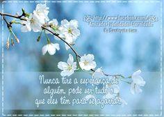 """há quem tenha o dom de nos tirar até a """"alma"""" quanto mais a esperança... :-("""