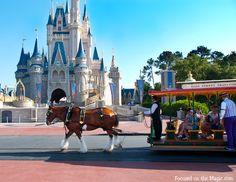 The Disney Wordless Wednesday Blog Hop Theme: Transportation, Main Street Trolley Magic Kingdom