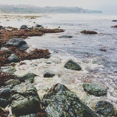 See this Instagram photo by @kfennimore •  Love the ocean in the morning