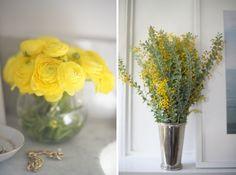 Loving yellow brights
