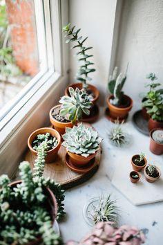 So ein schöne grünes und wildes Fensterbrett. Findet mehr heraus auf dem Blog und schaut bei Etsy vorbei.