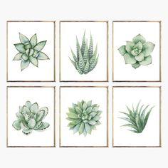 Set of 6 Succulents Watercolor Digital Print Instant Art Nursery Wall Decor, Wall Art Decor, Nursery Room, Girls Room Wall Decor, Bathroom Wall Art, Succulent Wall Art, Succulent Planters, Succulents Garden, Decoration Plante