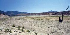 Cambio climático explica 25% de actual sequía: la más larga y extensa de la historia