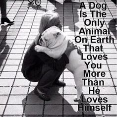 A dog is the only animal on earth that loves you more than he loves himself! I think it could be true.