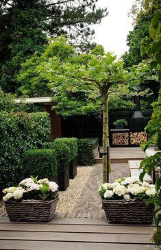 modern green and black garden