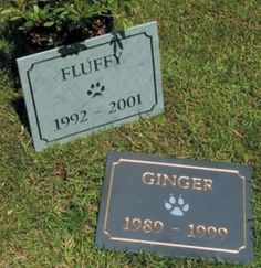 Pet Memorial Slate Marker Black w Green Horse Shoe by Stone Mill. $53.96. Pet Memorial Slate Marker Ready to be Personalized We only use genuine slate and stone, no poly-resin or plastics of any kind. Our natural stone and slate signs last for years acquiring a rich patina. Each piece is hand selected and cut to size - then sand-carved, deeply etched, and hand painted with weather resistant exterior enamels for years of outdoor or indoor enjoyment. Slate is a natural product of...
