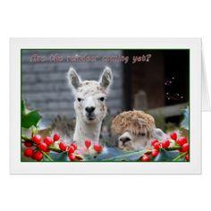 Alpaca Christmas Card - christmas cards merry xmas family party holidays cyo diy greeting card