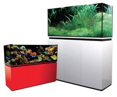 The Skyline aquarium series New range of high gloss polyurethane aquariums from Absolute Aquariums. Available from our website www.aquaconnection.com.au A truly uncompromised design, the elements of creating a luxurious and sophisticated space.