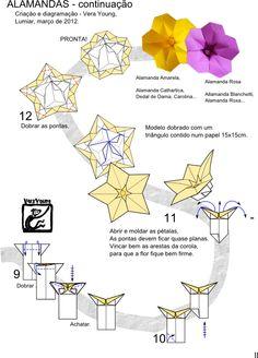 flower Alamanda Amarela e Rosa page 2