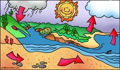 The Water Cycle - Free Science Lesson Plans, Activities, Powerpoints, Interactive Games