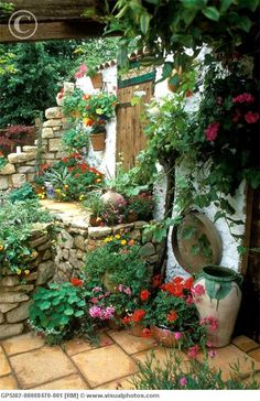 I love the mixture of plants and the terra cotta patio bricks