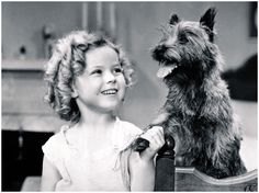 Shirley Temple Bright Eyes YouTube | Terry con Shirley Temple (Bright Eyes)