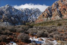 Snowcapped Mountains And Desert Foothills Photograph by Photography by R. L. Pniewski
