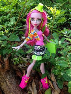 Marisol Coxi, Monster high, dolls, toys, bigfoot