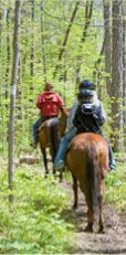 Are you constantly on the hunt for places to trail ride and groups to go with? Check out The Trail Rider Magazine's Ride Calendar