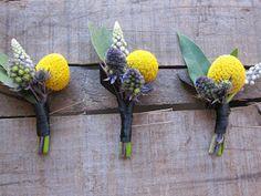 Little Pheasant: Yellow Balls