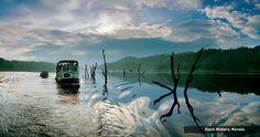 Black waters,kerala   INDIA