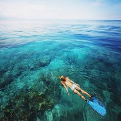 Dreaming of being somewhere far away #travel #Australia #coral #greatbarrierreef #coralreef #scubadiving #subadive #ocean #snorkle #sydney #melbourne #cairns #love #live #water #fish by traveldom_ http://ift.tt/1UokkV2