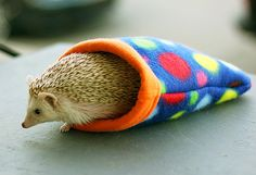 Polka Dot Small Animal Reversible Fleece Flannel by clairepartlow +++ For all the hedgehog lovers, haha! Cute!