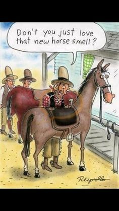 Don't you just love that new horse smell? HA