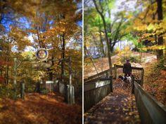 Fitzgerald Park - The Ledges - Grand Ledge #puremichigan #michigan