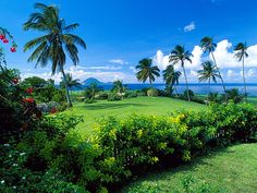 The islands of Saint Kitts and Nevis