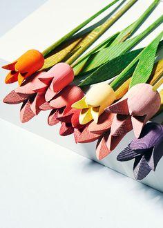 Tulips Rainbow | Sarah Otley