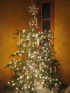 reminds me of our family Christmas tree, only we had real candles and a bucket of water nearby…just in case.