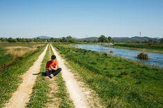 Man using cellphone siting on diminishing pathway Photo Free Stock Photos, Free Photos, Pathways, Photo Editing, Country Roads, Photoshop, People, Paths, Photo Manipulation