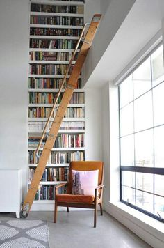 Library ladder envy