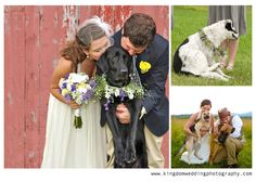 engagement pictures with dog | ... , bride and groom taking photos with their dogs on their wedding day