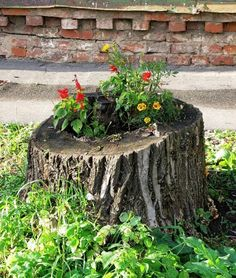recycling tree-stump for planter and decorating with flowers