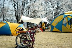 Korea spring camping with brompton
