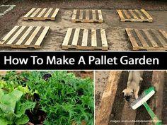 Perfect garden plan for herbs, lettuce, radishes,  carrots etc