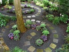 beautiful use of pavers, plants, and shrubs