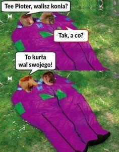 Very Funny Memes, Wtf Funny, Go To Sleep, Shakira, Best Memes, Haha, Geek Stuff, Funny Things, Emoji