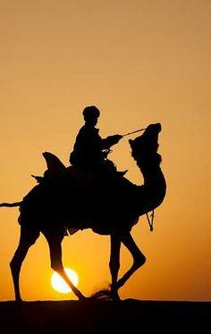Camel rider at sunset in the Thar Desert near Jaiselmer, Rajasthan