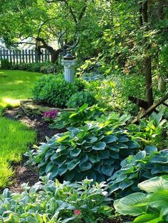 Garden And Lawn , Choosing The Best Shade Garden Plants : Sh - .Shade Garden Plants With Green Grass And Statue - Gardening Gazebo. The Secret Garden, Secret Gardens, Hosta Gardens, Design Jardin, Garden Cottage, Garden Bed, Easy Garden, Garden Hedges, Sun Garden