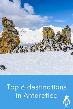 The experience is the destination, and each one opens up a new chapter of the Antarctic: Islands covered by glaciers, deep fjords, gigantic wildlife colonies, towering icebergs and ice-covered waterways – the wondrous spectacles visited by the BREMEN and the HANSEATIC will be determined by the weather and ice, with such decisions only being made on the day.
