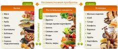 Можно ли питаться одними белками? От овощей толстею  плохо после них. Фрукты и крупы  терпеть немогу.