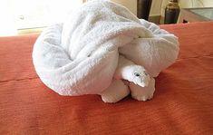 Towels Animals - Zwierzęta z ręczników - Origami z ręczników Turtle-towel folding