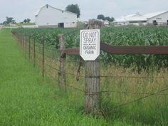 Photo from Erik @ Amish America