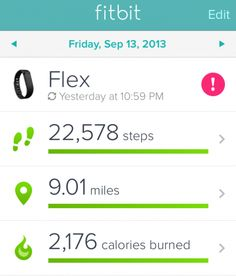 I love the fitbit - it makes losing weight so much more fun!