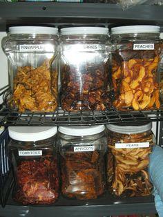 Food dehydration - part I - Salt Lake City Holistic Health | Examiner.com