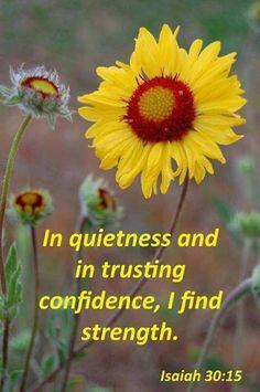 In quietness...