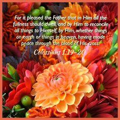 Colossians 1:19-20 