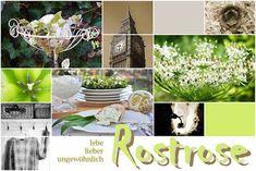 Rostrose - ღ Dekoration ღ Fotografie ღ Garten ღ Lebensfreude ღ Natur ღ Reisen ღ Rezepte