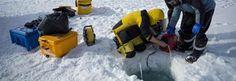 #Sorprendente descubrimiento bajo el hielo de la Antártida - Contexto: Contexto Sorprendente descubrimiento bajo el hielo de la Antártida…
