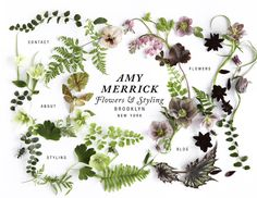 beautiful web design for BK-based stylist Amy Merrick Tag Art, Lettering, Typography Design, Logo Floral, Floral Design, New York Blog, News Website Design, Homepage Design, Website Layout